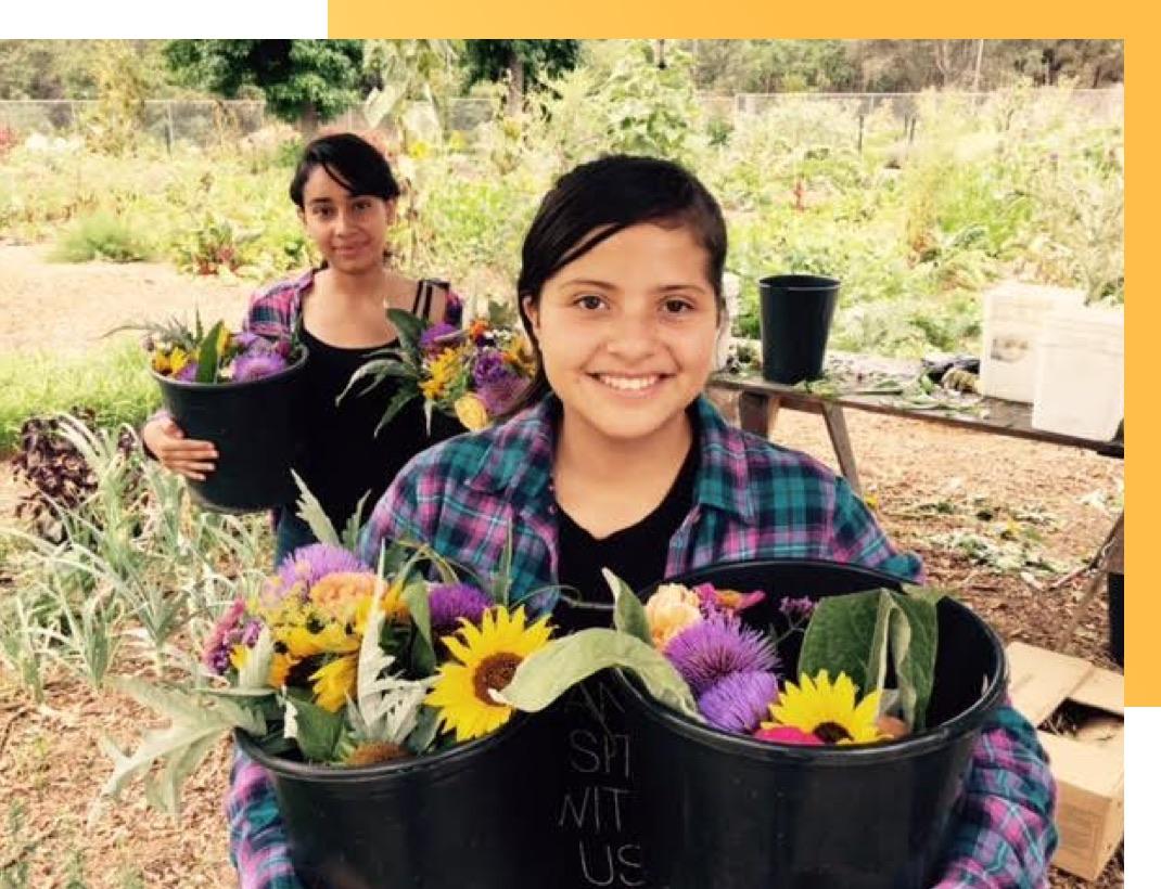 Gardening at APCH