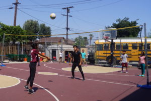 Volleyball copy